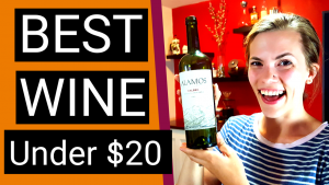 BEST Wine Under $20: 2016 Malbec REVIEW (Alamos Vineyards, Argentina)