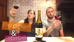BEST Wine Under $20 – 2015 California Pinot Noir Review [Prophecy]