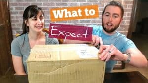 California Wine Club Shipment Unboxing And Cabernet Sauvignon Review