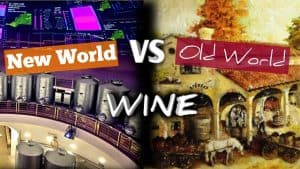 New World vs Old World Wine – What You NEED To Know [Bonus Bordeaux Review]
