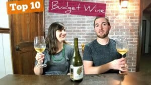 Top 10 BEST Wines Under $20 [Of the Last Year] – PLUS One Flock California Napa Chardonnay Review