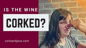 TOP 5 WINE FAULTS AND HOW TO DETECT THEM – Corked Wine and Other Common Defects