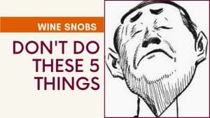 TOP 5 TYPES OF WINE SNOBS – How to Handle Them and Avoid Becoming One