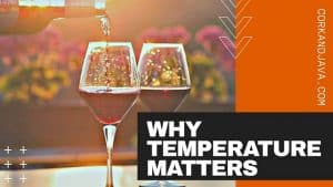 BEST WINE SERVING TEMPERATURES – Plus Tips for Getting Bottles Perfectly Chilled