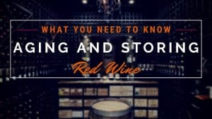 HOW TO STORE AND AGE WINE [Part 2] – Best Red Wines To Age and Store