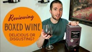 BOTA BOX – NIGHTHAWK BLACK – PINOT NOIR REVIEW [Best Wine Under $20]