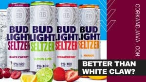 BUD LIGHT HARD SELTZER REVIEW [Better Than White Claw and Truly???]